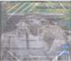 """ANGELIGHT - """"Целительные Силы Музыки - Живая Вода / Озеро Желаний"""" - CD"""